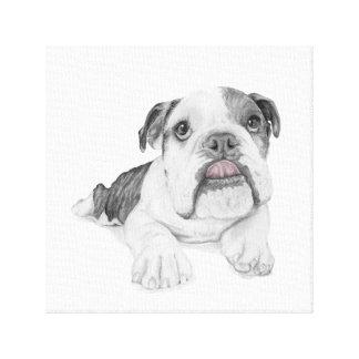 A Sassy Bulldog Puppy Drawing Canvas Print