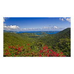 A scenic of Cruse Bay, St. John U.S Virgin