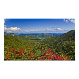 A scenic of Cruse Bay, St. John U.S Virgin Art Photo