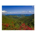 A scenic of Cruse Bay, St. John U.S Virgin Postcards