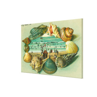A Scenic View Bordered with Sea Shells Canvas Print