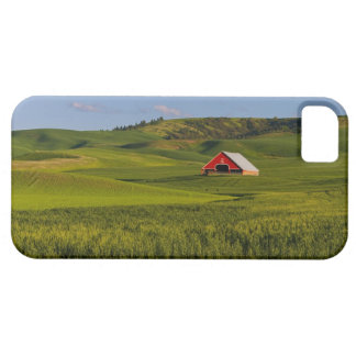 A scenic view of a barn in Moscow Idaho. iPhone 5 Cover