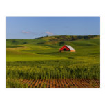 A scenic view of a barn in Moscow Idaho. Post Cards