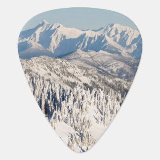 A Scenic View of Snowy Mountains and Trees. Guitar Pick