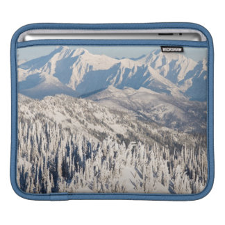 A Scenic View of Snowy Mountains and Trees. iPad Sleeve