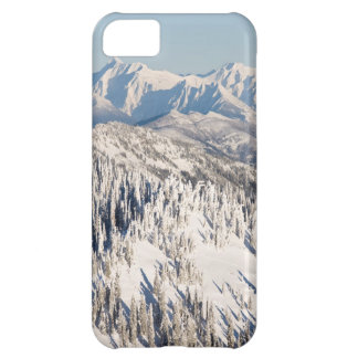 A Scenic View of Snowy Mountains and Trees. iPhone 5C Case