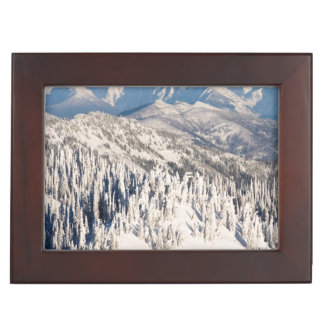 A Scenic View of Snowy Mountains and Trees. Keepsake Box
