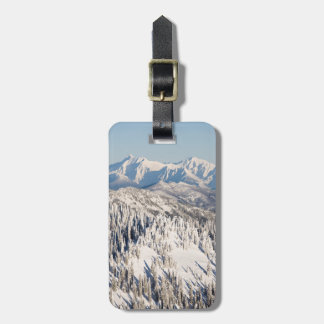 A Scenic View of Snowy Mountains and Trees. Luggage Tag