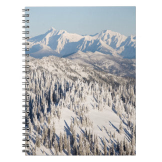 A Scenic View of Snowy Mountains and Trees. Notebook