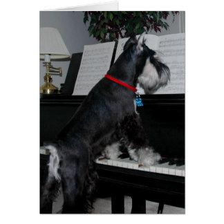 A Schnauzer at the piano Greeting Card