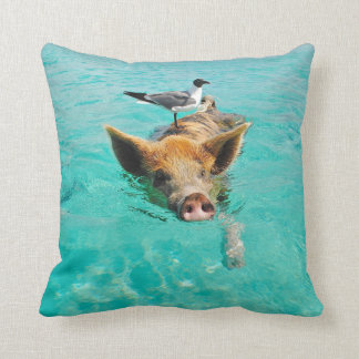 A sea gull and a pig cushion