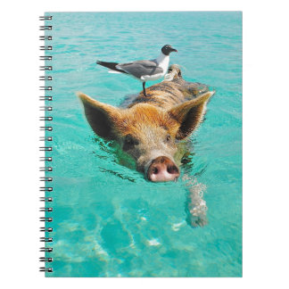 A sea gull and a pig notebook
