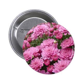 A Sea of Pink Chrysanthemums #2 6 Cm Round Badge