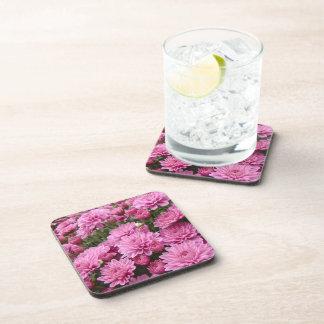 A Sea of Pink Chrysanthemums 2 Drink Coasters
