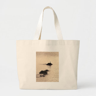 A Seagull Stands Jumbo Tote Bag