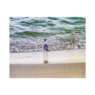 A Seagull Staring Out Over the Seashore Canvas Print