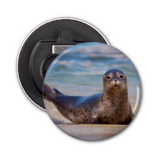 A seal on a beach along the Pacific Coast Bottle Opener