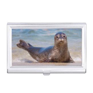 A seal on a beach along the Pacific Coast Business Card Holder