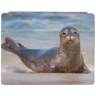 A seal on a beach along the Pacific Coast iPad Cover
