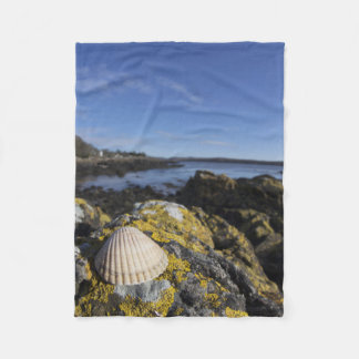 A Seashell Sits On A Rock | Dumfries, Scotland Fleece Blanket