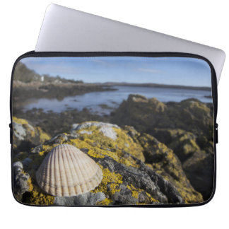 A Seashell Sits On A Rock | Dumfries, Scotland Laptop Sleeve