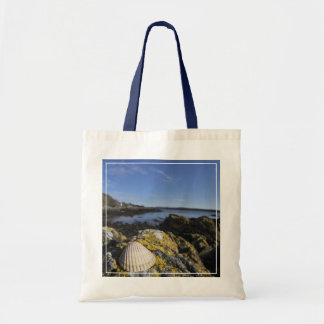 A Seashell Sits On A Rock | Dumfries, Scotland Tote Bag