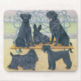 A seat in the park mouse mat
