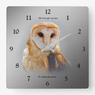 A Serene and Beautiful Barn Owl Square Wall Clock