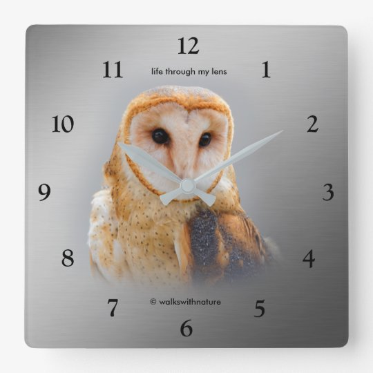 A Serene and Beautiful Barn Owl Square Wall