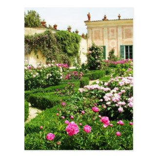 A Serene Formal Rose Garden Postcard