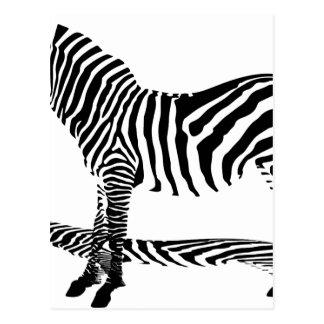 A shadow of a Zebra with stripes Postcard