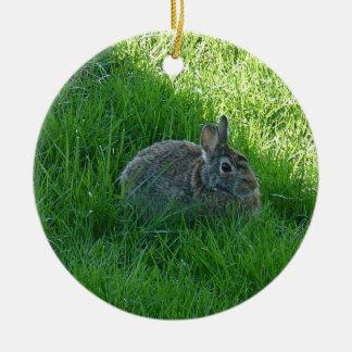 A Shady Bunny Christmas Ornament