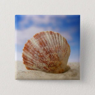 A Shell Propped In The Sand 15 Cm Square Badge