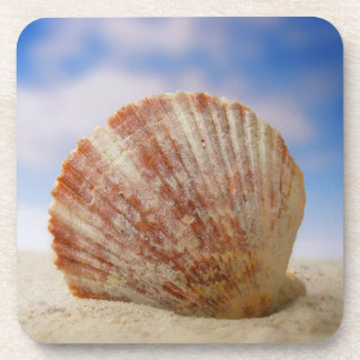A Shell Propped In The Sand Beverage Coaster