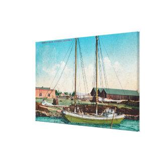 A Shipping Schooner ScenePetaluma, CA Canvas Print