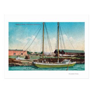 A Shipping Schooner ScenePetaluma, CA Postcard