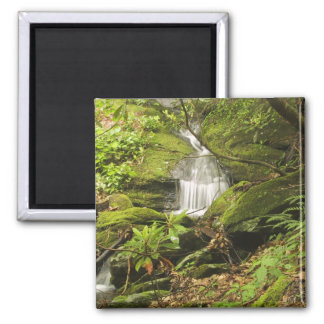 A Short Waterfall In A Small Stream Running Throug Square Magnet