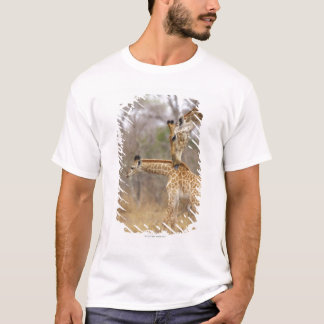 A side view of a Giraffe licking its young, T-Shirt