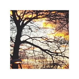 A silent sunset canvas print