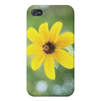 A Single Black Eyed Susan iPhone 4/4S Cover