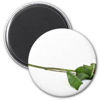 A Single Long-Stemmed Rose 6 Cm Round Magnet