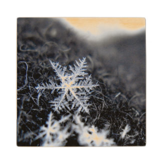 A single snowflake on stands out wood coaster