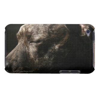 A sleeping pit bull dog iPod touch Case-Mate case
