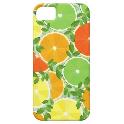 A Slice of Citrus iPhone 5 Cover