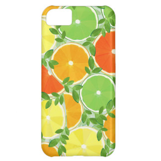 A Slice of Citrus iPhone 5C Covers