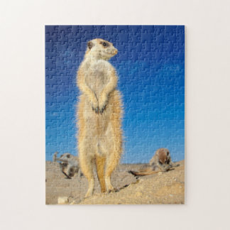 A small Suricate family interacting at their den Jigsaw Puzzle