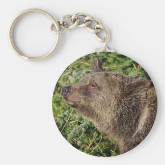 A Smiling Grizzly Bear Key Chain