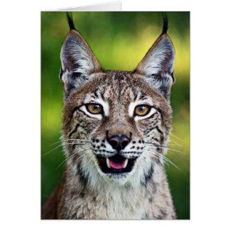 A Smiling Siberian Lynx Card