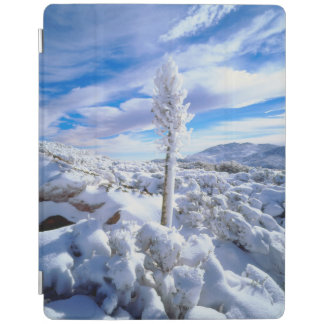 A snow covered yucca iPad cover
