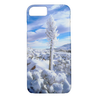 A snow covered yucca iPhone 8/7 case